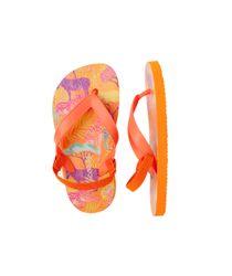 4210446-Naranja-Neon