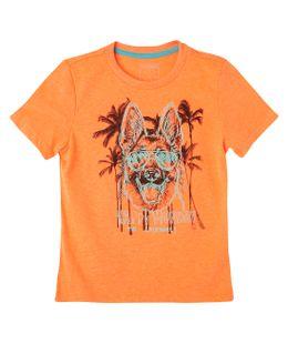 4123787-Naranja-Neon